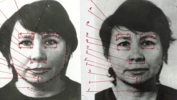 Портретная экспертиза
